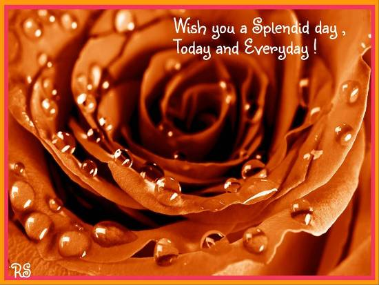Wish You A Splendid Day. Free Have a Great Day eCards