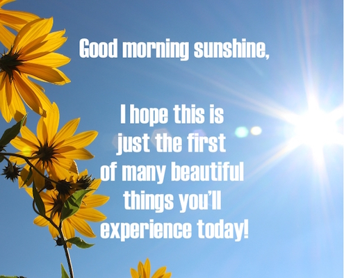 Good morning sunshine free have a great day ecards greeting cards good morning sunshine free have a great day ecards greeting cards 123 greetings m4hsunfo