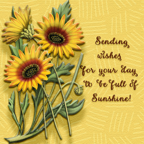 May Your Day Be Full Of Sunshine.