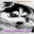 Have A Nice Day Ecard Just For You.