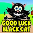 Good Luck Black Cat...