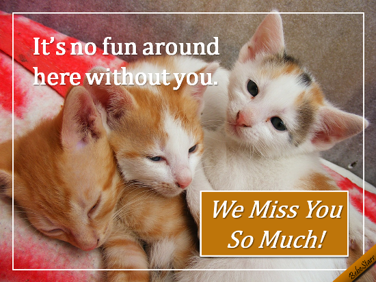 we miss you free miss you ecards greeting cards 123