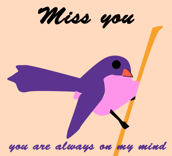Miss You, Bird...