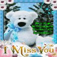 A Cute And Nice Miss You Card.