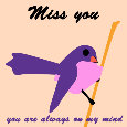 Home : Everyday Cards : Miss You - Miss You, Bird...