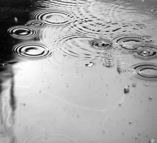 Rain Falls.