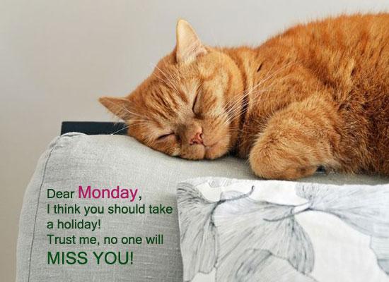 Dear Monday!