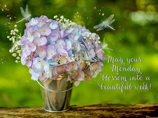 Monday wishes for a beautiful week free monday blues ecards 123 monday wishes for a beautiful week m4hsunfo