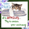Home : Everyday Cards : Monday Blues - Try To Contain Your Excitement.