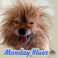 Home : Everyday Cards : Monday Blues - My Monday Morning Hair...