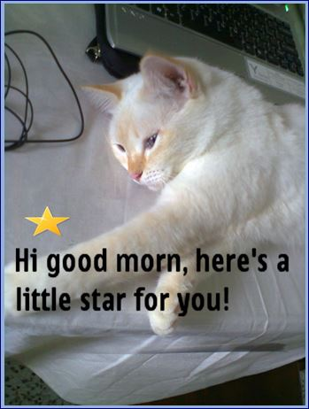 Good Morning, Here's A Star...