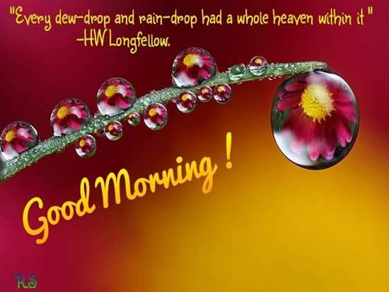 Beautiful Good Morning Wish For You Free Good Morning Ecards 123 Greetings