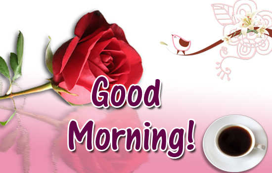 Good Morning Flower Free Good Morning Ecards Greeting Cards 123