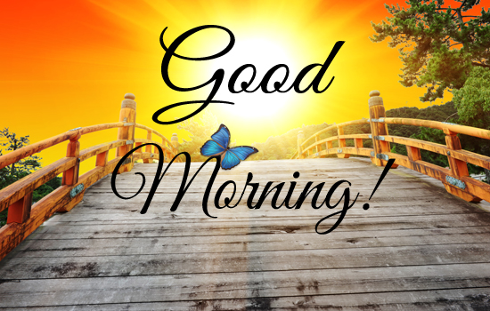 Cute good morning greeting ecard free good morning ecards 123 cute good morning greeting ecard m4hsunfo