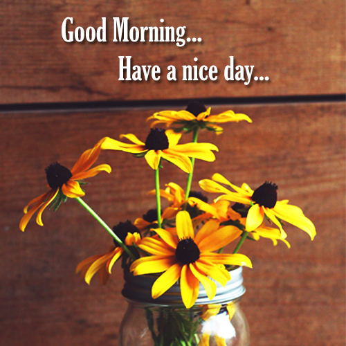 Good Morning Have A Nice Free Good Morning Ecards Greeting Cards 123 Greetings
