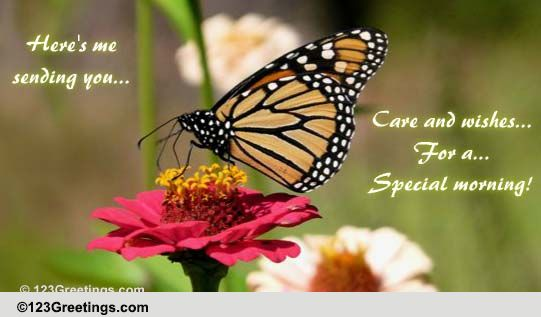 A Special Morning Wish For You! Free Good Morning eCards