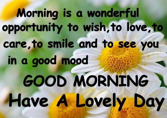 Good Morning Everyone Cheers Up We Have Changed : For a lovely morning free good ecards greeting