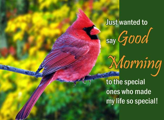 Good Morning Wishes To Special Ones! Free Good Morning