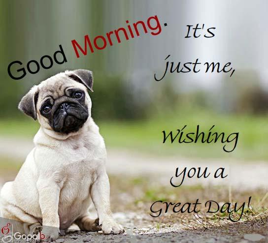 Images Of Nature Wishing Good Morning