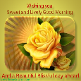 Good Morning With Yellow Rose.