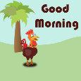 Nice Morning!