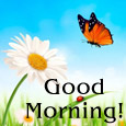 Special Good Morning.