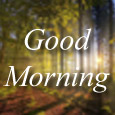 Morning Is A Wonderful Blessing.