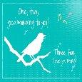 Light & Breezy Good Morning Love Bird!