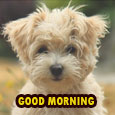 Home : Everyday Cards : Good Morning - Hi! Have A Great Morning.