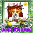 Home : Everyday Cards : Good Morning - A Hello And Good Morning Card.