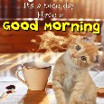 A Cute Morning Card Just For You.