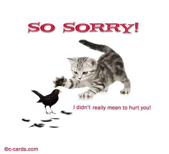 Cute Apology. Free Sorry eCards, Greeting Cards | 123 ...