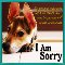 Home : Flowers : Sorry - A Forgiveness E-Card Greeting Cards.