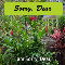 Home : Flowers : Sorry - Sorry Dear, Garden Greeting Cards...