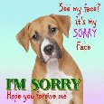 Home : Everyday Cards : Sorry - My Sorry Face.
