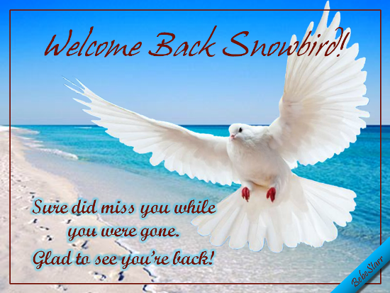 Welcome Back Snowbird!
