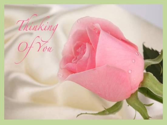 A Lovely Card Conveying Your Feelings.