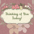 Home : Everyday Cards : Thinking of You - Thinking Of You Today, Pretty Flowers.