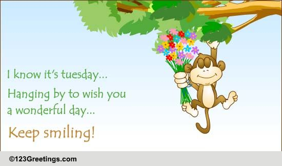 Everyday Tuesday Toons Cards, Free Everyday Tuesday Toons eCards | 123 ... Terrific Tuesday Quotes