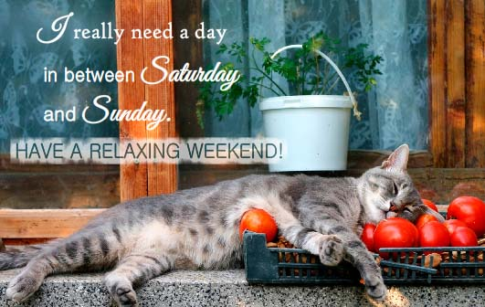I Really Want To Relax Free Enjoy The Weekend Ecards