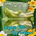 Home : Everyday Cards : Enjoy the Weekend - Froggy Wants To Enjoy The Weekend.