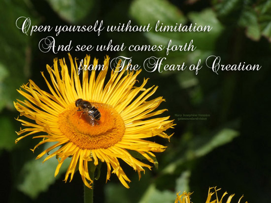 Open Yourself Without Limitation.