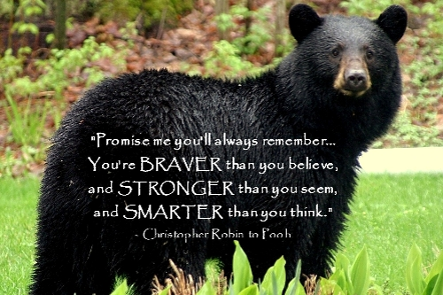 Promise Bear.