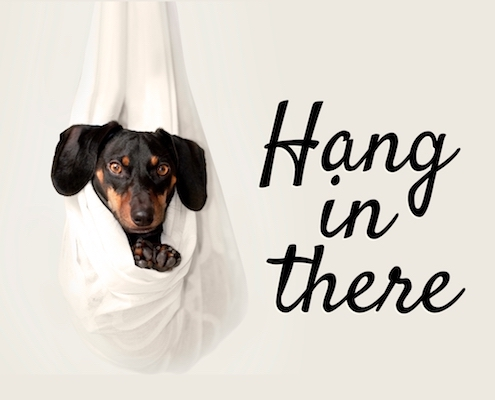 hang in there free encouragement ecards greeting cards 123 greetings