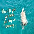 Keep On Swimming.