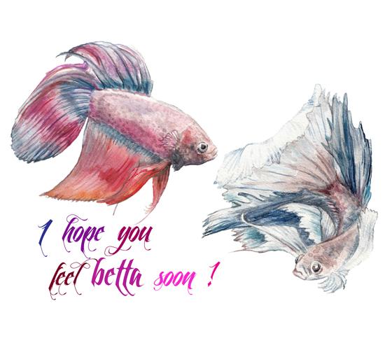 Feel 'Betta' Soon!