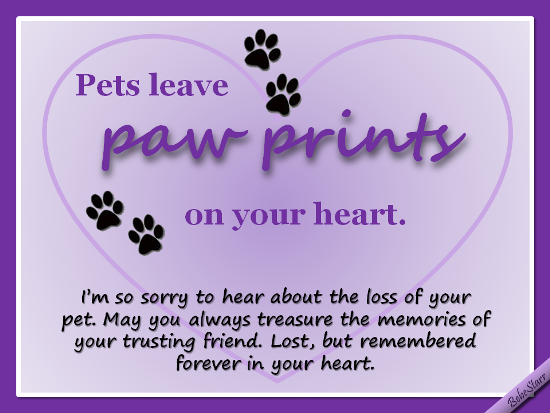 Sympathy dog loss quotes - photo#7