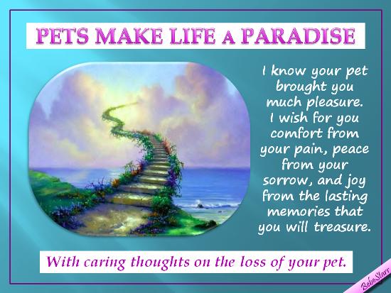 Pets Make Life A Paradise.
