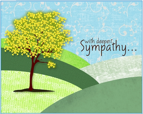 Sympathy In...