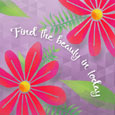 Find The Beauty In Today Pretty Flower.